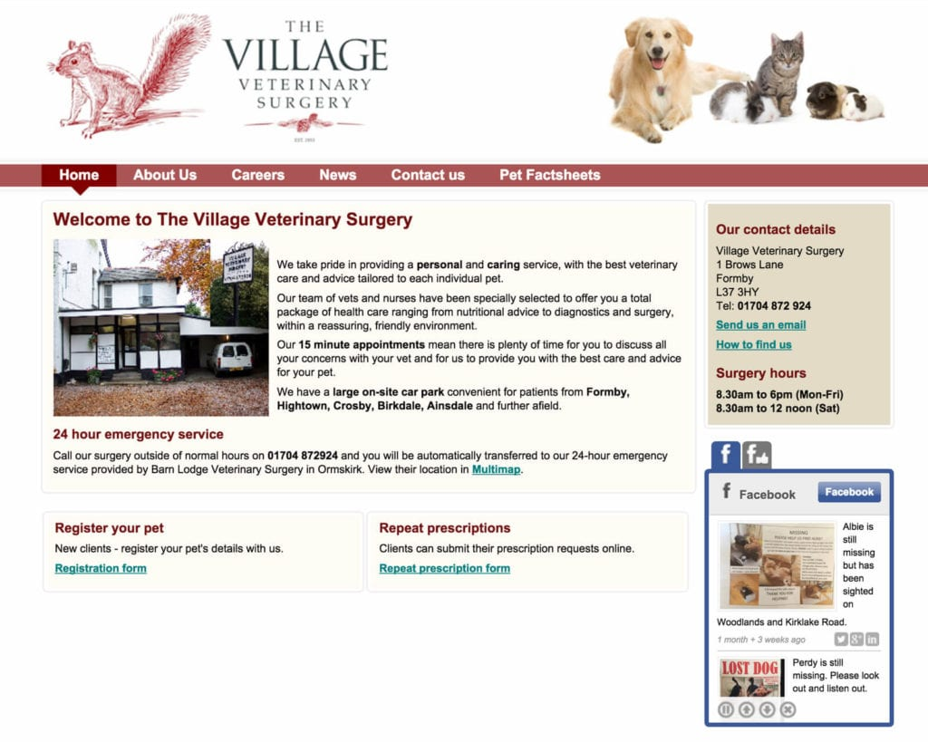 Vet Marketing for Village Vets: Original website design