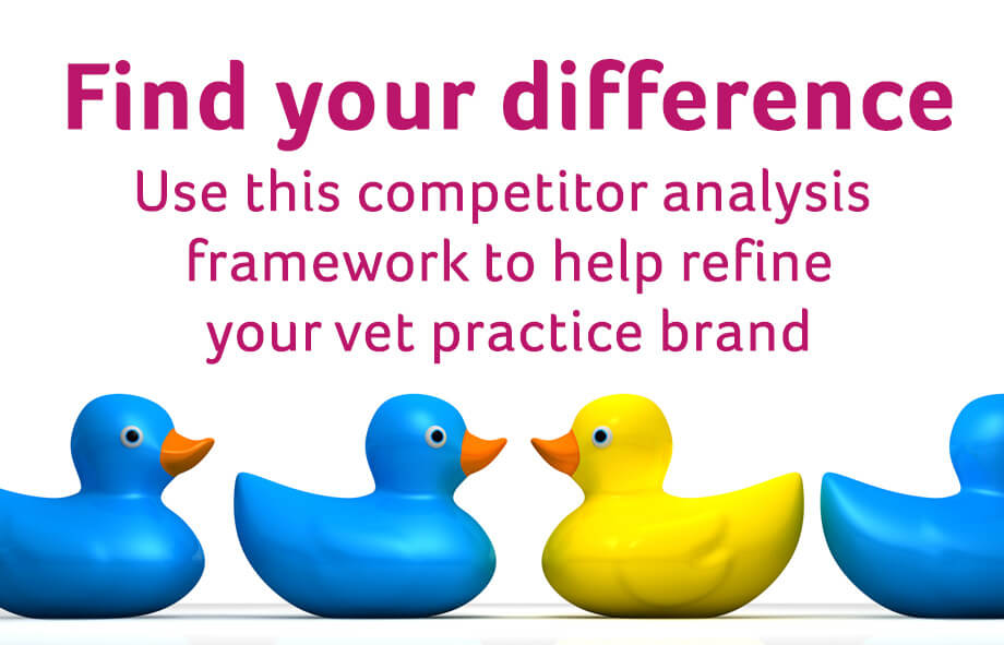 Use this quick competitor analysis framework to refine your vet brand